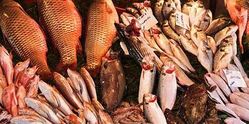 fish-market-l